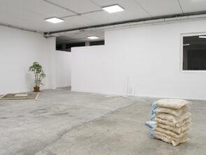 Spazio In situ \\ Arte contemporanea fuori dal GRA